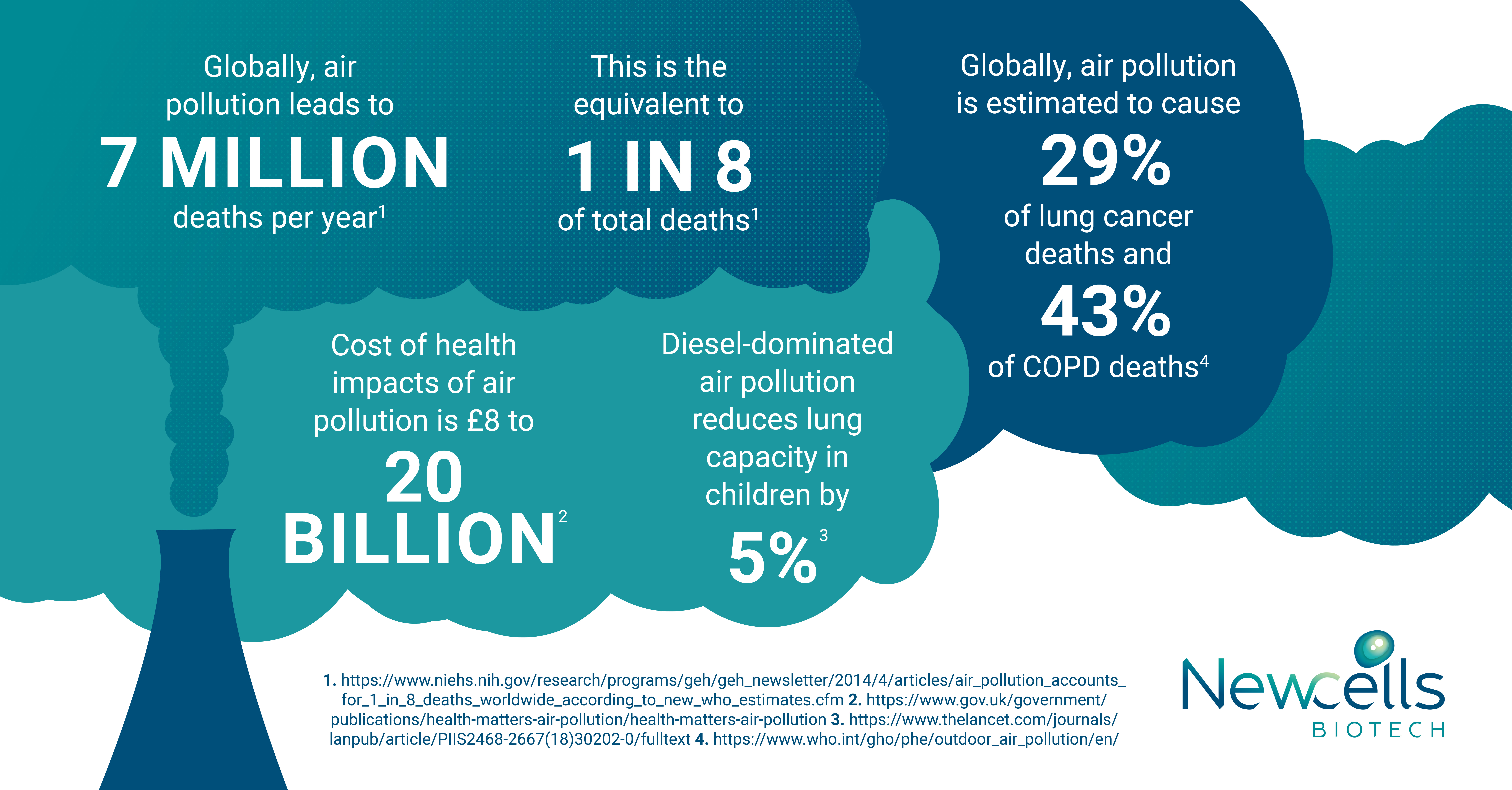 Impacts of air pollution on the lung